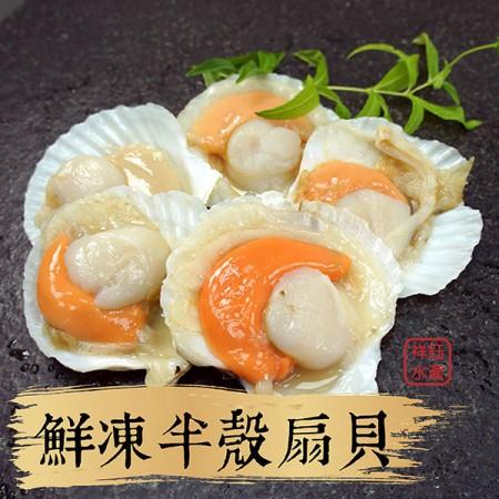 【祥鈺水產】鮮凍半殼扇貝 500g 內有5顆