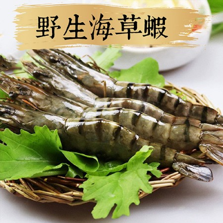 【祥鈺水產】野生海草蝦 400克重 內有8尾(盒)