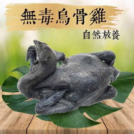 【祥鈺水產】自然放養 無毒烏骨雞全雞