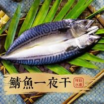 【祥鈺水產】鯖魚一夜干 240g一尾