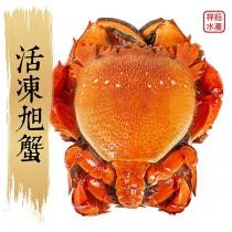 【祥鈺水產】活凍旭蟹